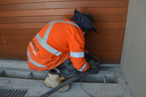 concrete grinding seaforth sydney