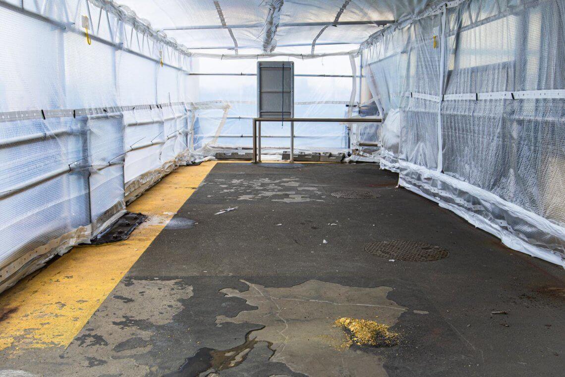 Floor Grinding and Epoxy Removal on Taronga Zoo Wharf